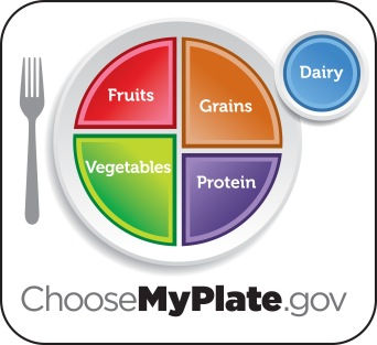 myplate_yellow_livetype copy